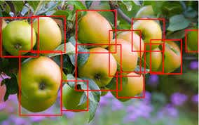 Machine Learning: Image/Object Classification