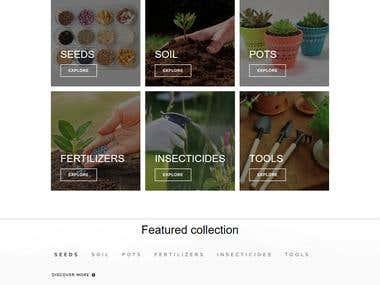 Website Design With Wordpress
