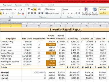 Biweekly Payroll Report