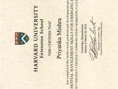 Harvard Business Strategy - EMSEL Certificate.