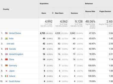Stats of your website traffic.