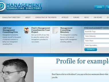 Wordpress - Management Consultancy Directory