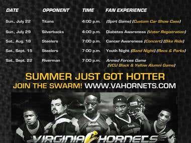 Virginia Hornet Portfolio 1