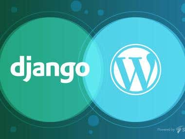 Link wordpress mysql database to python django app