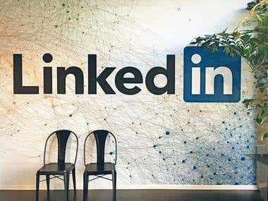 Linkedin Data Colletion