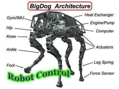 Robot Design & Control & Implementation