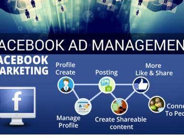 Facebook Marketing And Ads Set Up