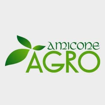 Logo Design - Amicone-Agro