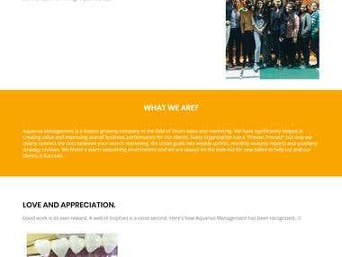 Aquarius Management Marketing and Management Website