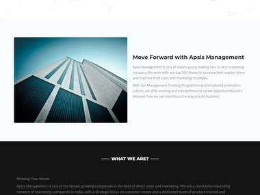 Apsis Management Marketing and Management Website