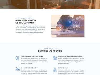 Landing Page Design for Insight Security