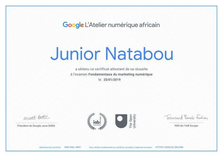 Google Certification: Digital Marketing Top Level   Freelancer