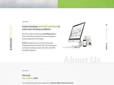 Evolve homepage mock