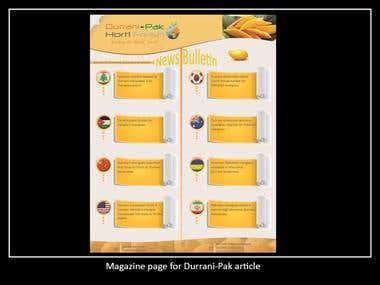 Mazagine Page Layout