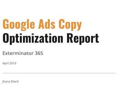 Google Ads Copy: Optimization Report for Exterminator 365