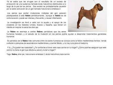 Portfolio P26-30