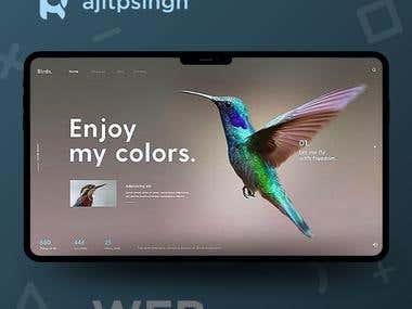 WEB Design Showcase 003