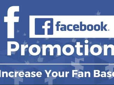 Facebook Fan Page/ Business Page Promotion