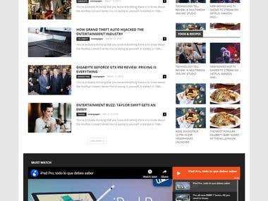 Newspaper/magazine/blog website