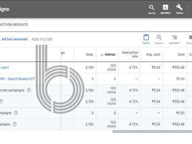 The Bid campaign performance on Adwords
