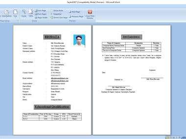 Microsoft Word format CV or Bio-data