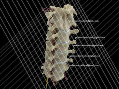 Renders from 3D Medical Animation