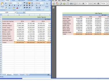 Manually PDF converted into Excel