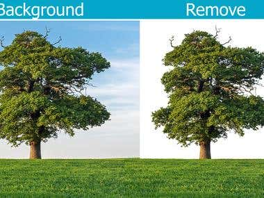 Background Remove Tree