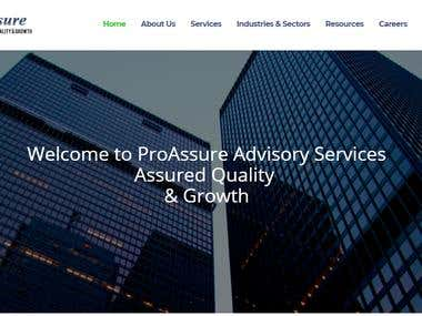 ProAssure Website