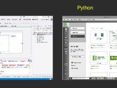 Python & C#