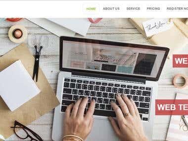 Mian Designer Web Portfolio Design
