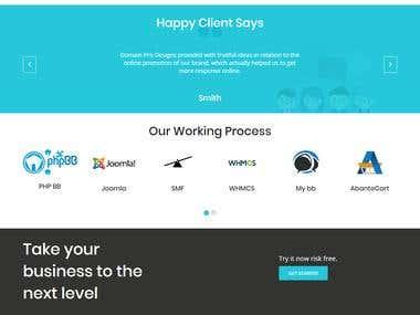 Domain Pro Designs
