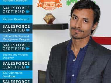 Salesforce Certified Expert