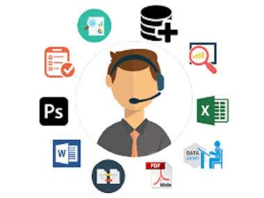Virtual Assistant for Data Entry.
