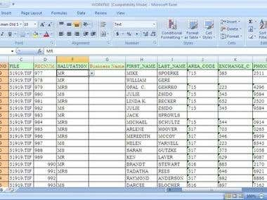 Data entry work in excel
