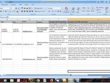 Web searching copy paste and data entry in Excel