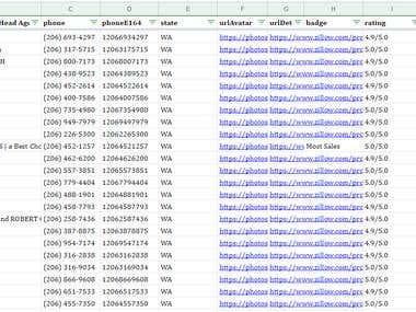 Data Entry - Web Search