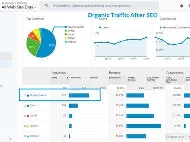 Organic Traffic After SEO