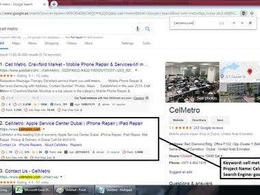 Top 2 Ranking in Google.ae