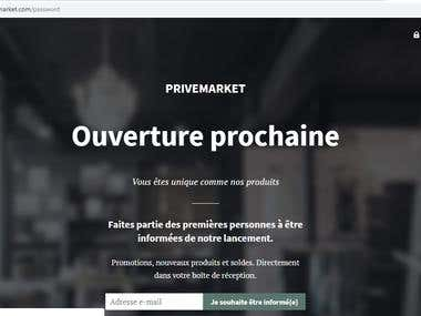 Developed Shopify Website