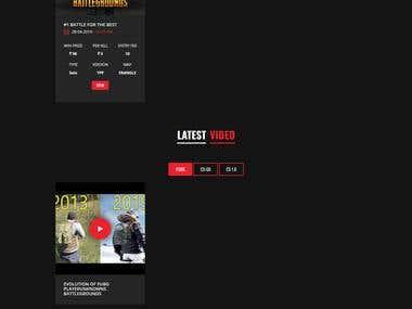 Develop Pub G Gaming website.