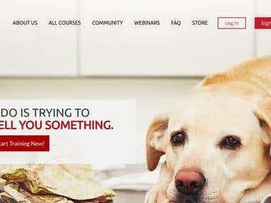LMS/Wordpress/Learndash/Woocommerce Website.