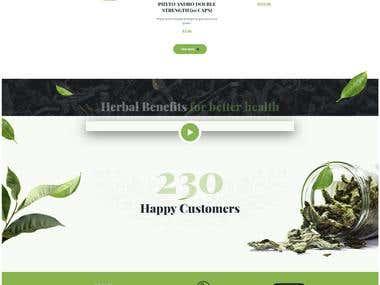 Logo and Website Designing