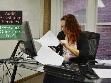Audit Assistance