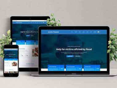 Website development for NGO - Cosmic Panacea