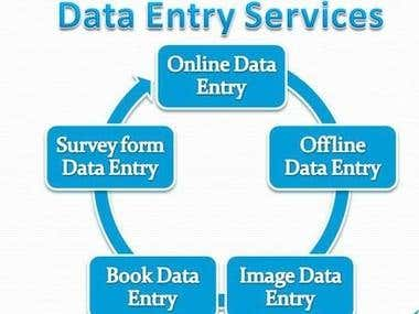 Data Entry skills & Contain Related picture
