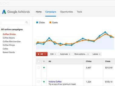 Pay-Per-Click Campaigns:How to Succeed in PPC and GOOGLE ADs