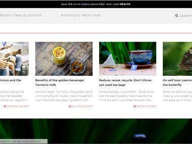 Our Latest Web Development Portfolio