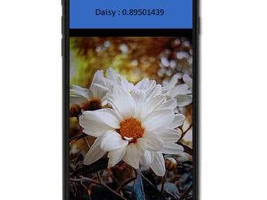 Flower Identify iphone app using TensorflowLite