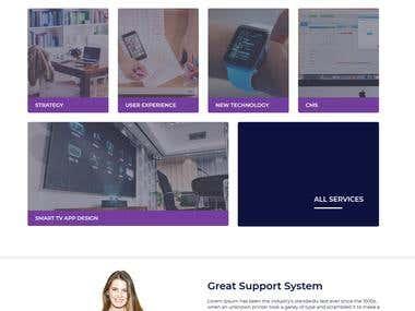 Agency Based Website